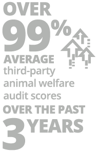 over 99% average third-party animal welfare audit scores over the last 3 years